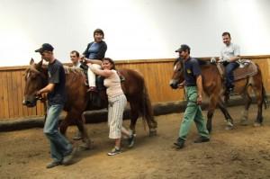 konie02