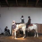konie03