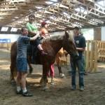 konie05