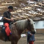 konie07